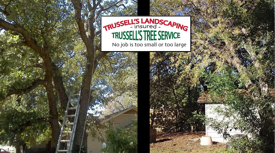 Trussell's Tree Service / Trussell's Landscaping